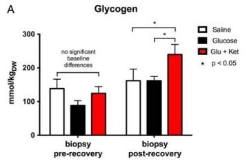 Ketone glycogen
