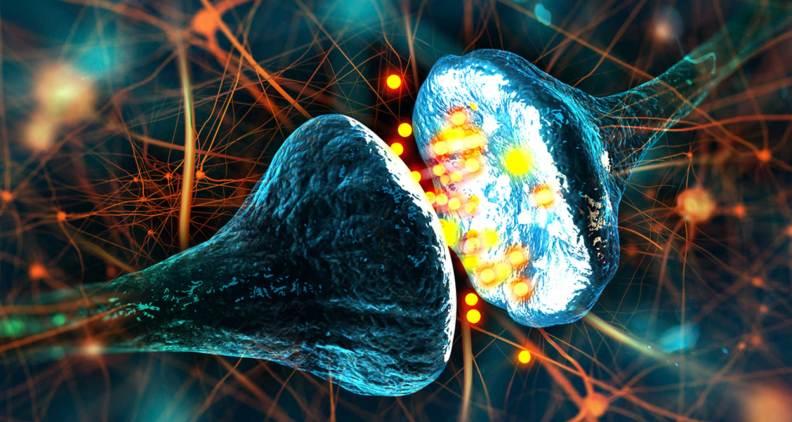 neurotransmitters erectile dysfunction ED MenElite