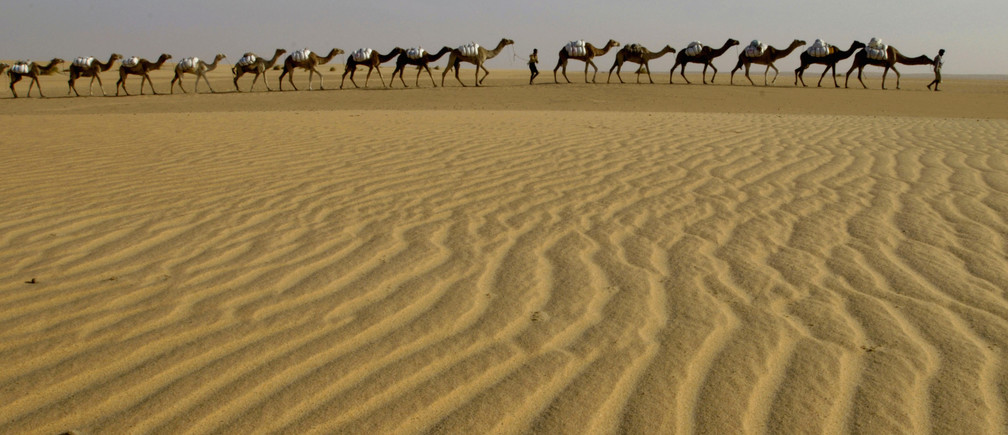 How human error could have created the Sahara desert