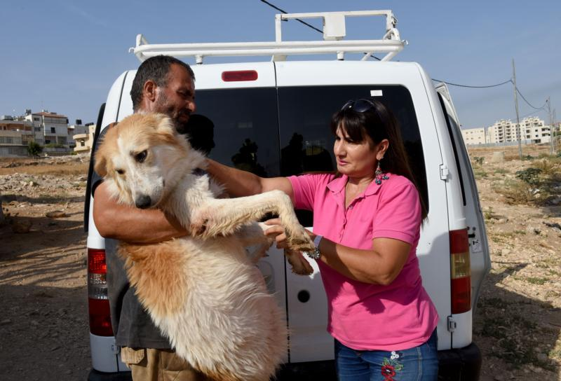 Palestinians turning to pets caring for emotional comfort