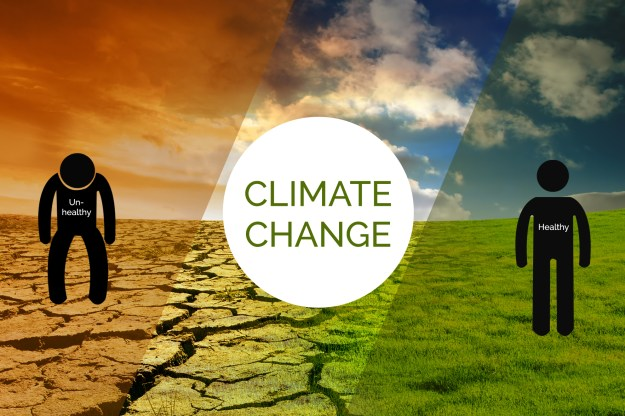 Battling Climate Change: How You Can Help?
