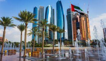 Professor: 'certification' mania hobbles Middle East development