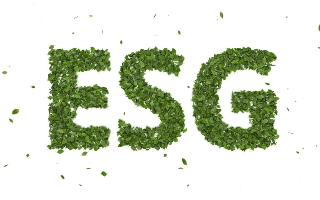 ESG is an investment driver for real estate and construction