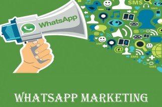 How Can Businesses and Healthcare Industry Benefit Through WhatsApp?
