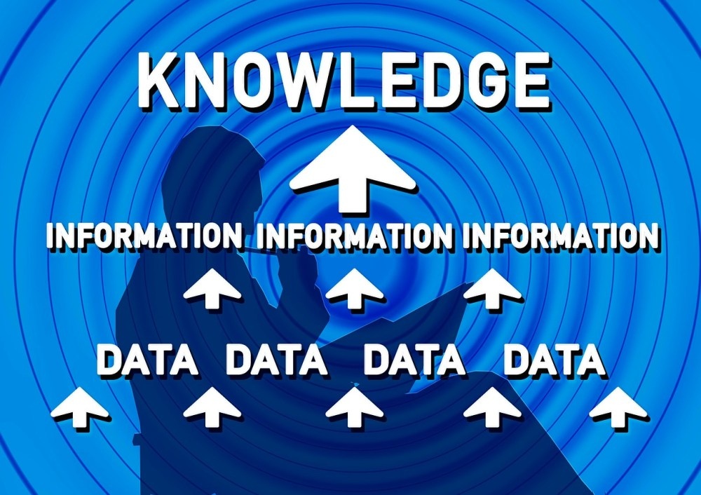 What are Knowledge Management Systems?