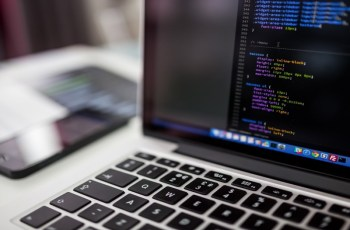 Adapting To the Web Development Strategy