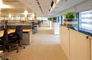 Taylor Rafferty LLC: Capital Markets Experts