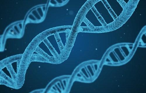 Dan Fratu from the Fratu Foundation Unlocks the DNA of Kids of the Future