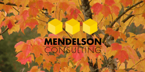 Mendelson Consulting Fall Leaves