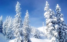 background-desktop-images-setting-widescreen-winter-wonderland-wallpapers