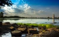 Mengjia Liu - Memorial Park2 (1 of 1)