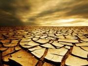 oholost, suha zemlja, pustinja