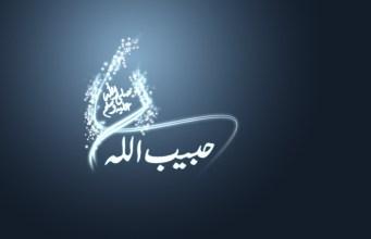 Habibullah Poslanik Muhammed