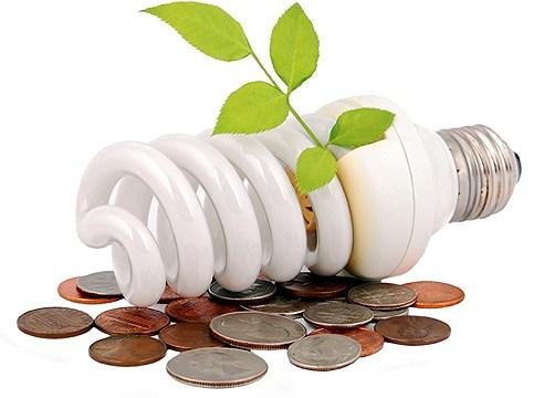 ekonomia-elektryky