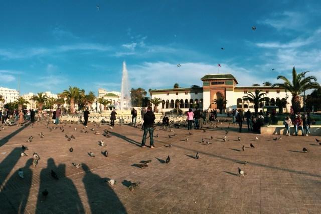 初到摩洛哥的感覺就是:空地很多,有時候可以看到地平線…