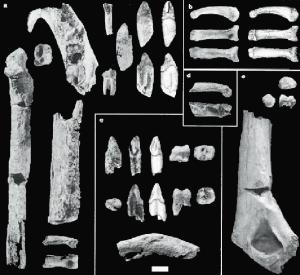 Ardipithecus kadabba, 5,8 mio. år