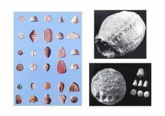 Eksempler på lerbrikker (tokens)