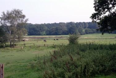Meiendorf 2002