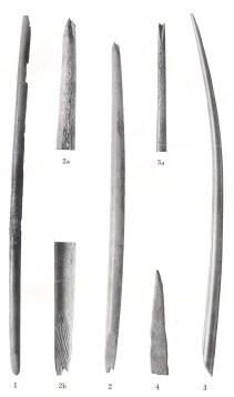 Nåle af  rensdyrtak, Stellmoor (fra A. Rust, 1943)