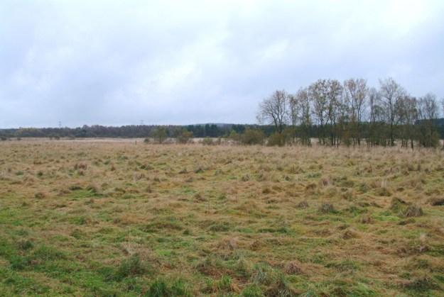 Omtrent her lå Klosterlundbopladsen. Vue fra Kragelundsvej 2002
