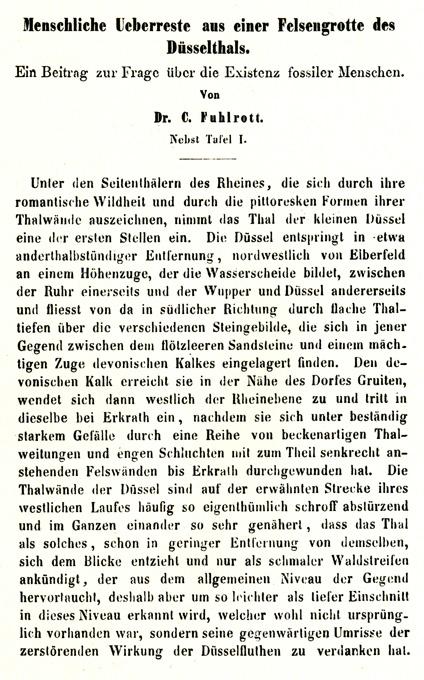 Fuhlrotts originale beskrivelse fra 1859