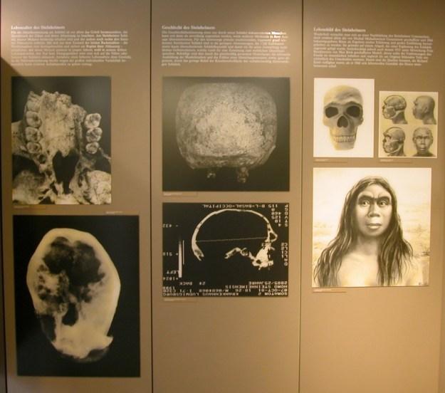 Interiør fra museet
