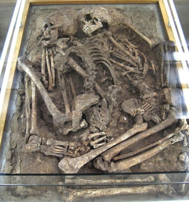 De to skeletter af Augrinacienalder