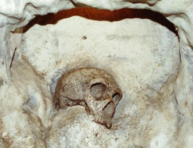 Fra en af grotterne på Gibraltar