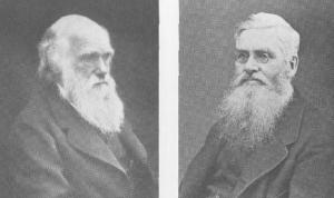 Charles Darwin (1809-1882), da han var 60 år og Alfred Russel Wallace (1823 - 1913), da han var 55 år