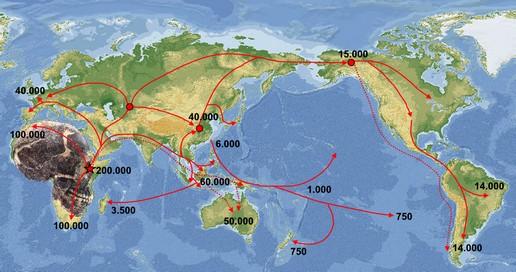 Homo sapiens koloniserer verden fra Østafrika