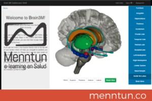 brain3m