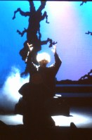 1993 Into the Woods (4)