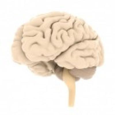 hulpverlening Onderzoek naar dementie
