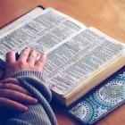 Leviticus 14: twee vogels - wet op de melaatsheid, huidvraat