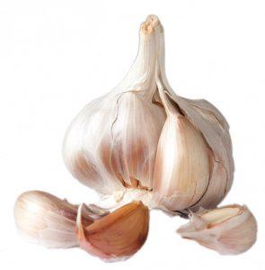 garlic-220495_960_720