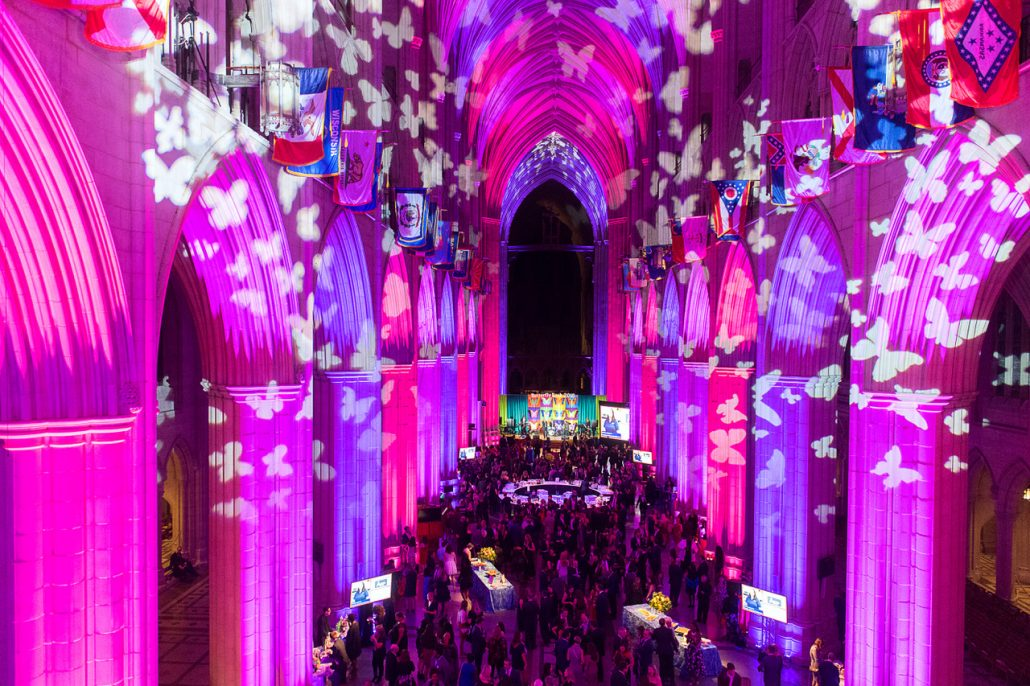 Butterfly Bash at the National Cathedral
