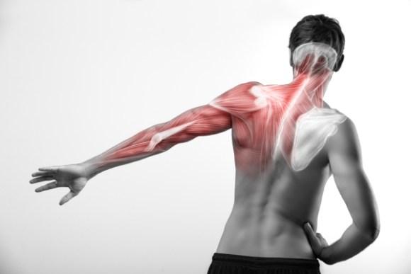 肩甲骨ダイエットに期待できる効果