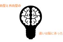 内向型 外向型 脳の構造 違い
