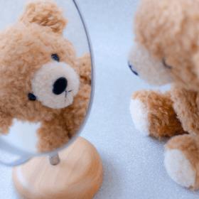 鏡・真似・熊のぬいぐるみ