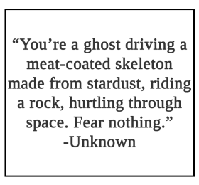 You're a ghost driving a meat-coated skeleton Quote