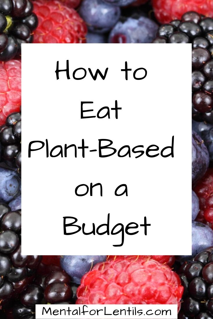plant-based on a budget pin image 2