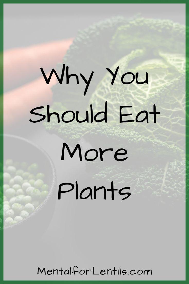 eat more plants pin image