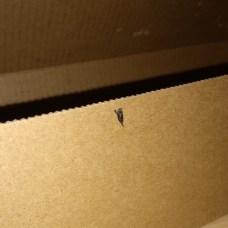 Currys Dead Something in Nitro 5 Box