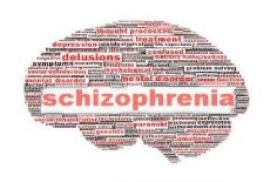 Schizophrenia is a mental illness that affects the brain and causes delusions