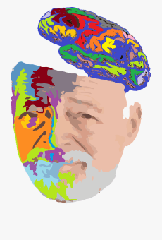 Coloured image drawing of male face, half of which is coloured in, with brain on top of the head sliced open