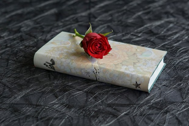red rose sitting atop a book