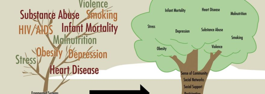 Tree diagram showing effects of social inquities