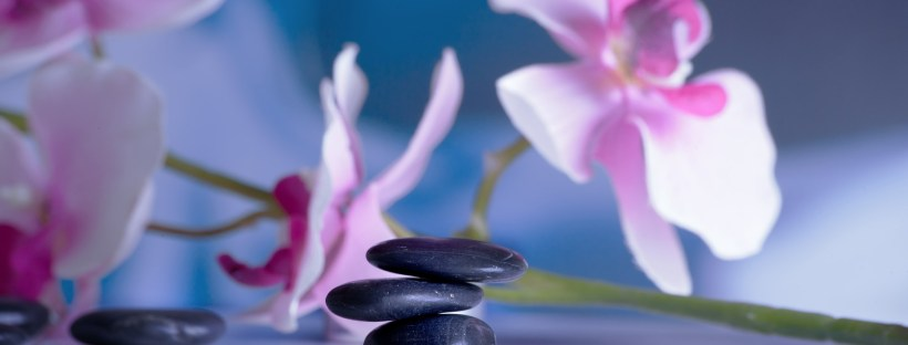 orchids and stacked black stones