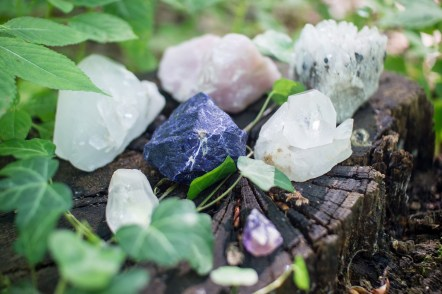 crystals sitting on a stump surrounded by leaves
