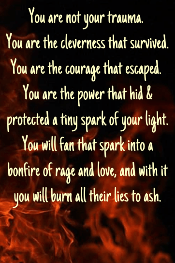 written against a backdrop of flames: You are not your trauma. You are the cleverness that survived. You are the courage that escaped. You are the power that hid & protected a tiny spark of your light. You will fan that spark into a bonfire of rage and love, and with it you will burn all their lies to ash.